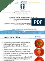 Elaboracion Salsa de Tomate Partes Repartidas