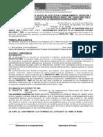 Acta Compromiso Institucion y Organiz Proyecto Pmg