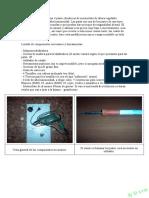 Patas de Metacrilato Iluminadas.pdf