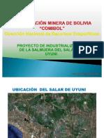 37163440 LITIO Presentacion