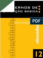 12 - Obesidade.pdf