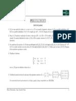 PEA1 Algebra 17 Enunciados