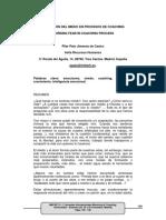 24_Pato.pdf