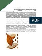 Transformación Cacao