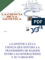 Genetica Adn y Arn 100219164841 Phpapp01