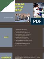 Gerencia de Proyectos Mineros 1.
