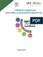 Guiìa Para La Seleccioìn de Proyectos-primaria_25042018