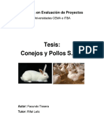 Tesis de Conejo.pdf