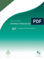 Unidad1.Transferenciadematerialgenetico_060317