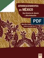 Maria Elisa Velazquez e Iturralde-Afrodesc en México