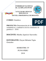 Dayan Melania Tapia Gonzales