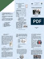 Ronal Gestion Triptico Desarrollo Organizacional