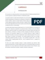 CUERPO (Autoguardado).docx