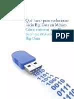 Que Hacer Para Big Data en Mexico