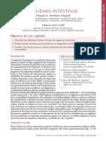 26.isquemiaintestinal.pdf