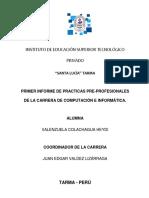 Informe Practicas Heydi Colachagua