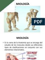 MIOLOGÍA.ppt