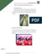Informe - Construcciones II - Aguas