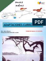 capacitacion adaptaciones.pptx