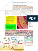 Fisiopatología de La Ateroesclerosis - Dr. Guzmán