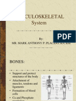 Musculoskeletal(Sir Mhacky)
