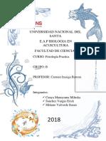 Informe Fisiologia Falta
