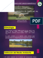 5.Derecho Ambiental