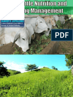 Beef Cattle Nutrition and Feeding Management.pdf