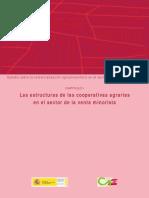 Las Estructuras de Las Cooperativas Agrarias en El Sector de La Venta Minorista