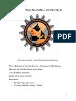 Informe de Laboratorio de Metalúrgica