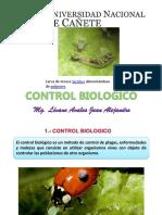 Diapositivas de Control Biologico
