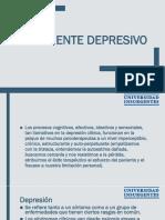 El Paciente Depresivo