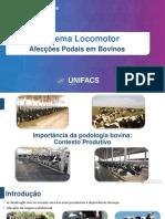 AFECÇÕES PODAIS EM BOVINOS - Copia.pdf