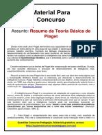 19. Resumo Teoria de piaget.pdf