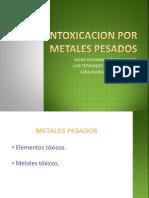 Intoxicacion Por Metales Pesados