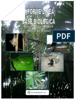 """Informe Biolã""""Gico - Palmas de Shanusi Resumen."""