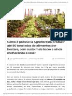 Como é Possível a Agrofloresta Produzir Até 80 Toneladas de Alimentos Por Hectare, Com Custo Mais Baixo e Ainda Melhorando o Solo_ – Agrofloresta Do Futuro