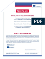 Website Example Certificate Mobility of Youth Workers