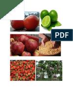 Productos Guatemala