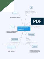 EPP Mapa Mental