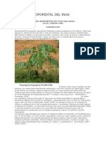 Manual Agroforestal Del Inga