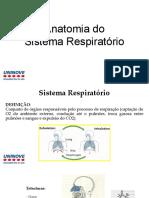 AULA 5 Anatomia Do Sistema Respiratório