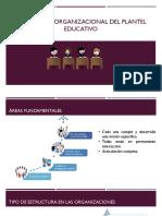 Organización educaiva