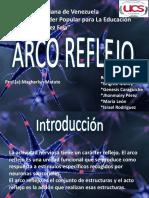 Arco Reflejo