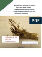 Taxonomía de Los Insectos Con Énfasis en El Neotrópico - Copia - Copia