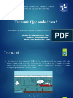 Tsunami Pp t