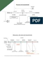 10_Estructura_del_Proceso_de_conocimiento.pdf