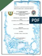 INFORME N°02 DETERMINACION DE HUMEDAD.docx