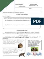 Guía de trabajo Ciencias 3° Sonido.docx