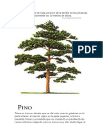 El pino.odt